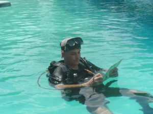 Scuba Diving Internship Packages