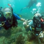 Pattaya Island Speedboat Trips