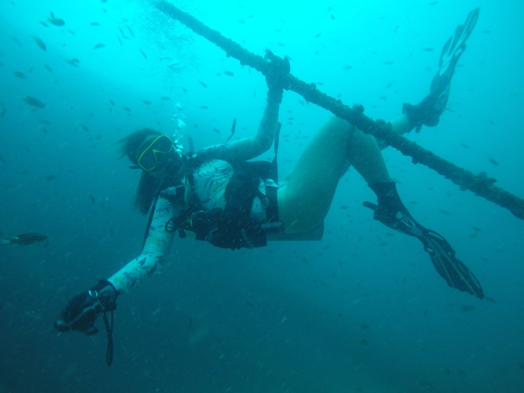 Pattaya dive trip schedules www.real-divers.com Pattaya Thailand